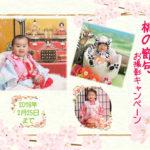桃の節句 ~女の子の大切な日~