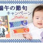 端午の節句キャンペーン開催!